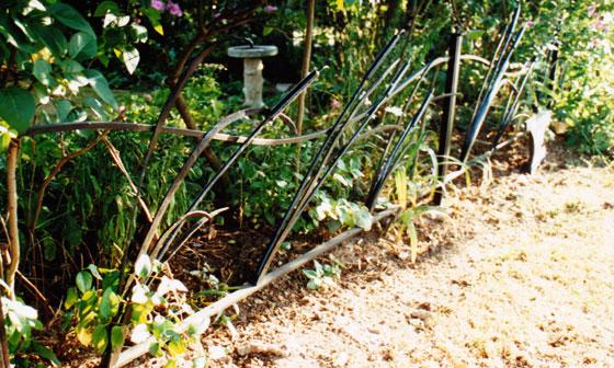 Windswept Bullrush fence